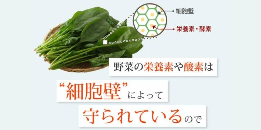 野菜の細胞壁