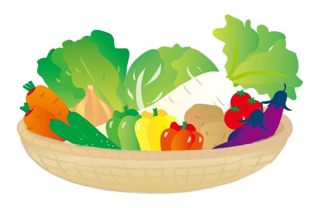 極濃青汁に含まれる野菜
