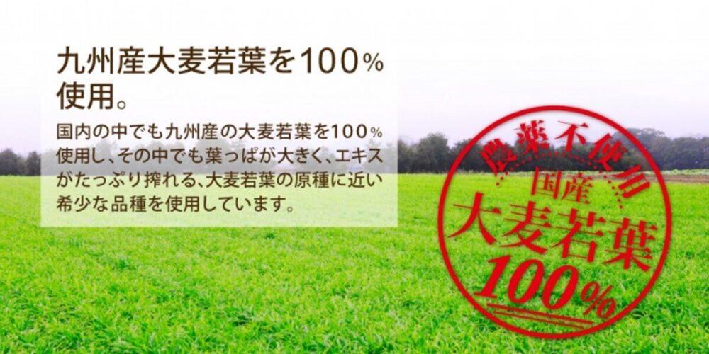 極濃青汁は九州産大麦若葉