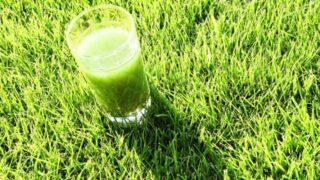 大麦若葉青汁の栄養成分・抗酸化作用で老化防止