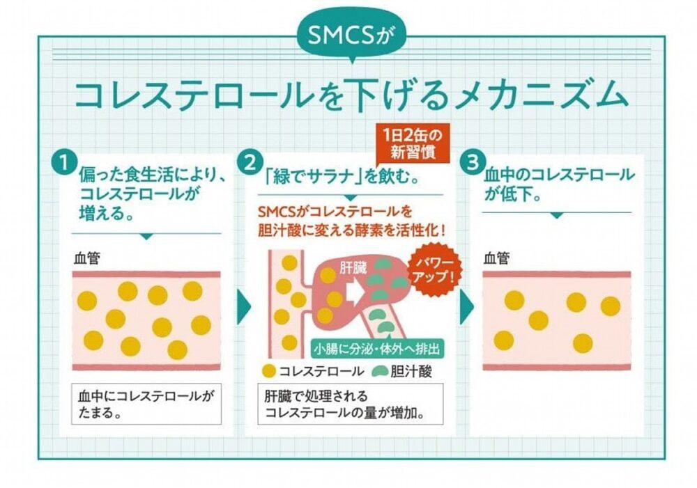 SMCSとはブロッコリー、キャベツ由来のコレステロールを下げるアミノ酸